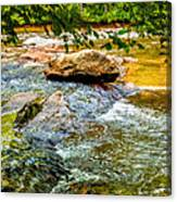Stream II Canvas Print