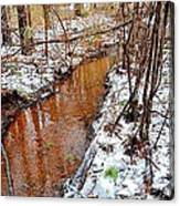 Stream In The Winter Forest Canvas Print