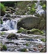 A Stream In Wicklow # 4 Canvas Print