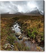 Stream On Rannoch Moor  Canvas Print