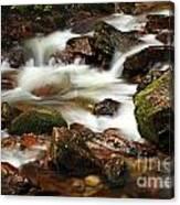Stream Running Over Rocks Canvas Print