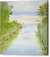 Stream Running To The Ocean Canvas Print