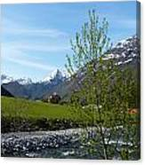 Stream To The Fjord Canvas Print