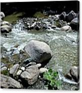 Stream Water Foams And Rushes Past Boulders Canvas Print