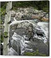 Stream With Waterfall In Vermont Canvas Print