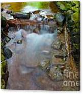 Streaming Green Canvas Print