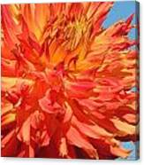 Streaming Petals Canvas Print