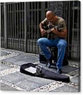 Street Musician - Sao Paulo Canvas Print