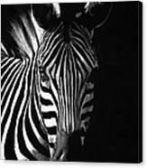 Striped Beauty Canvas Print