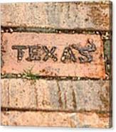 Stroll Down Texas Lane Canvas Print