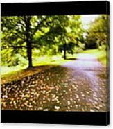 Stroll On An Autumn Lane Canvas Print