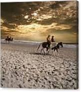 Strolling Horses Canvas Print