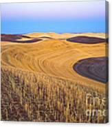 Stubble Canvas Print