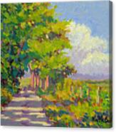 Study For Afternoon Shadows Canvas Print