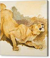 Study For Daniel In The Lions Den Canvas Print