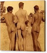 Study Of Three Male Nudes Canvas Print