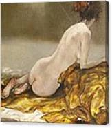 Study Over A Silk Drapery Canvas Print