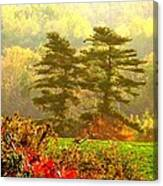 Stunning - Looks Like A Painting - Autumn Landscape  Canvas Print