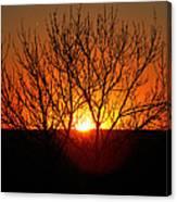 Stunning Stone Park Sunset Canvas Print