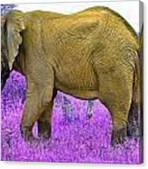 Styled Environment-the Modern Elephant Bull Canvas Print