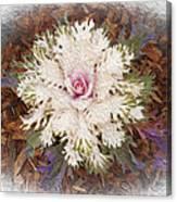 Stylized Cabbage Canvas Print