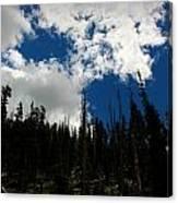 Subalpine Summer Skies Canvas Print