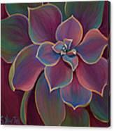 Succulent Delicacy Canvas Print