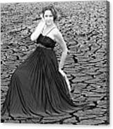 An Image Of Elegance Black And White Canvas Print