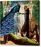 Suck My Peacock Canvas Print