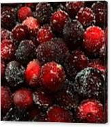 Sugared Cranberries Canvas Print