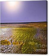Sulphur Beach  Canvas Print