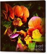 Sultry Nights - Flower Photography Canvas Print