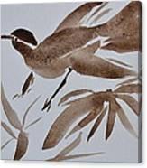 Sumi Bird Canvas Print