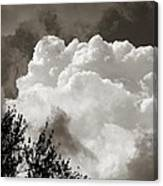 Summer Afternoon Cloudscape Canvas Print