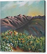 Summer At Kananaskis Canvas Print