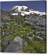 Summer At Rainier Canvas Print