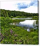 Summer At The Green Bridge Canvas Print