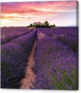 Summer At Valensole Canvas Print