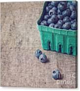Summer Blueberries Canvas Print