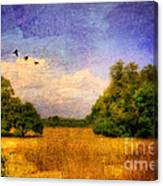 Summer Country Landscape Canvas Print
