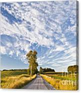 Summer Country Road Canvas Print