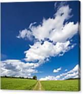 Summer Day Blue Sky Green Grass Canvas Print