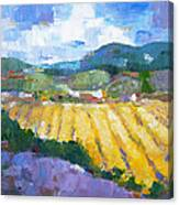 Summer Field 2 Canvas Print