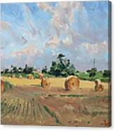 Summer Fields In Georgetown On Canvas Print
