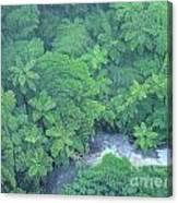 Summer Green Canvas Print