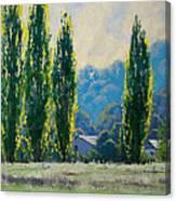Summer Greens Canvas Print