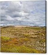 Summer In Iceland Canvas Print