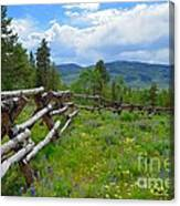 Summer In The Mountains Canvas Print
