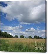 Summer Iowa Prairie Canvas Print