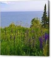 Summer Lake View Canvas Print